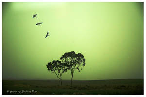 Green day by tachsheet-Jeulian