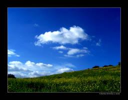 Fields of Dreams by StillSheFlies