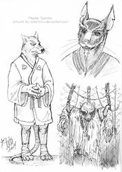 Master Splinter x3 by astercrow