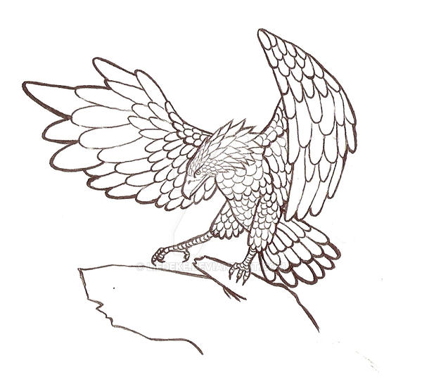 Line Drawing Eagle : Eagle lines by liedeke on deviantart