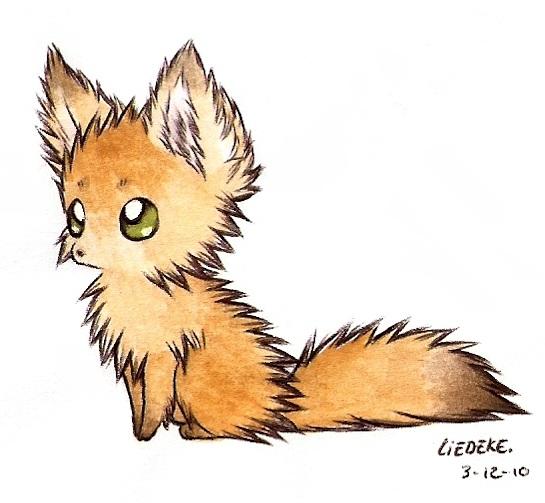 fluffy fennec fox by Liedeke on DeviantArt