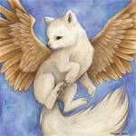 white flying fox