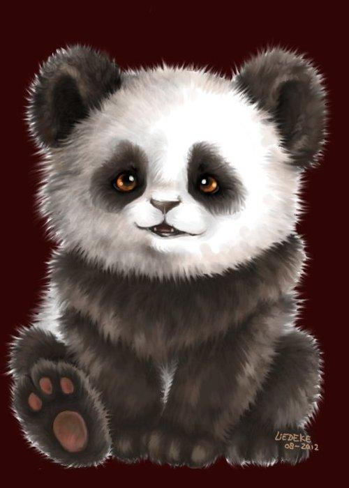 barkingside Chubby panda