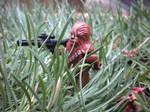 Stealth Wookie