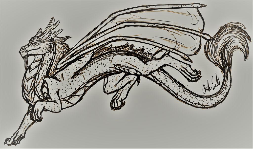 Male Koanan Dragon