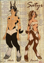 World of Dragon Queen: The Satyrs