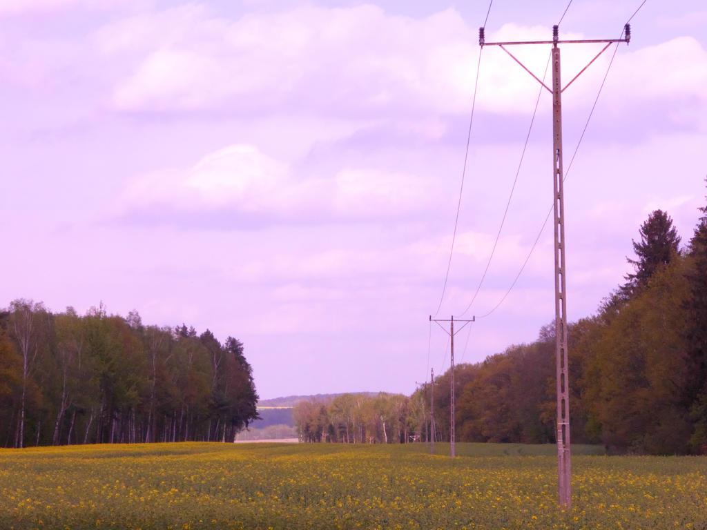 Pylons (pink) by Qulithinoren