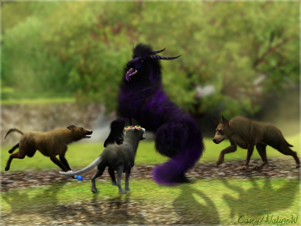 Dexaard Natyre by FantasyMoonKennel