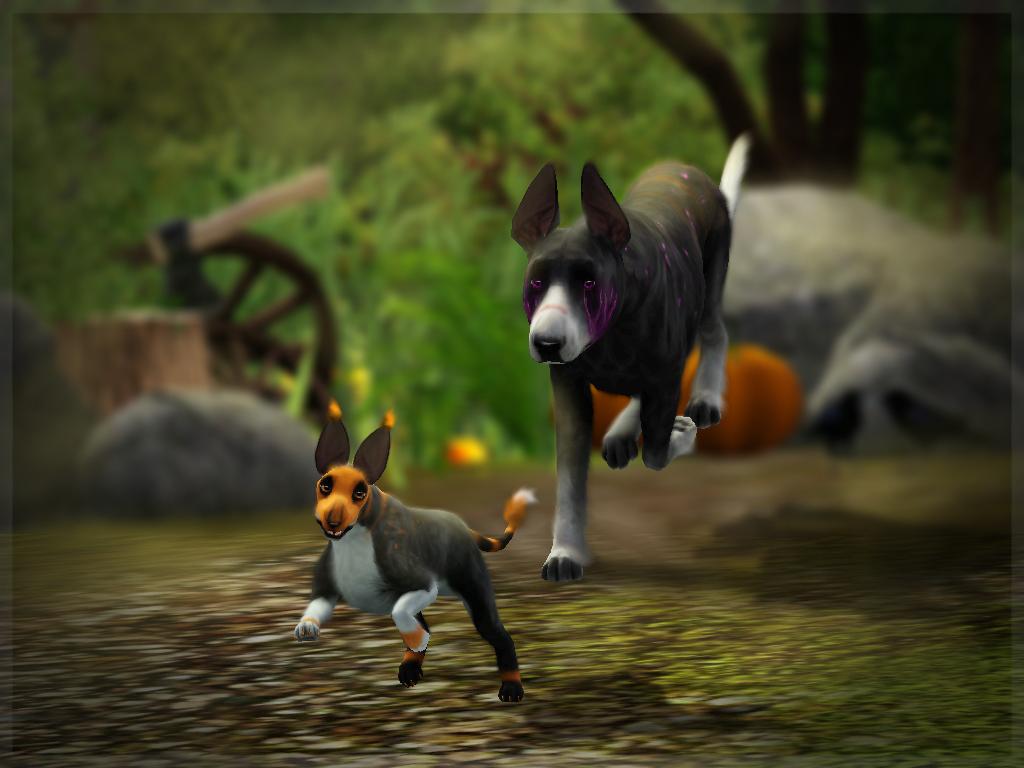 Dexaard Natyre: The Skedaddle by FantasyMoonKennel