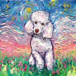White Poodle Night by sagittariusgallery