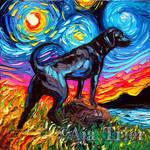 Black Labrador Night 2 by sagittariusgallery