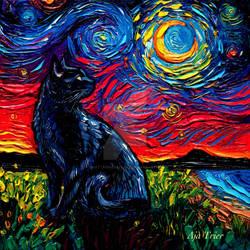 Black Cat Night 2