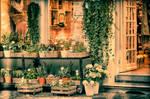On the street - Bruges