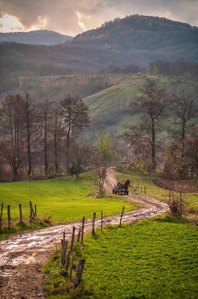 The way home by ralucsernatoni