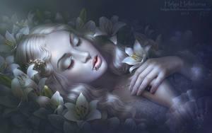 - by Helga-Helleborus