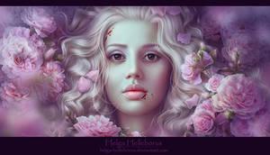 Sweet Dreams by Helga-Helleborus