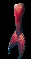 Mermaid Tail Png 6
