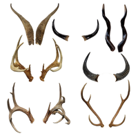 Horn Pack Png