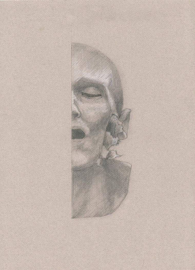 Splithead by studiodenny