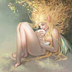 Fairy of lost Souls