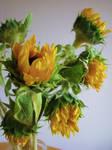 Sunflowers Stock 1