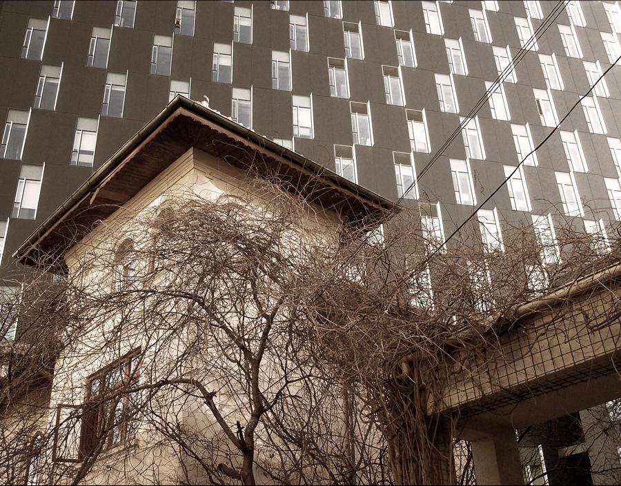 windows II by hepikied