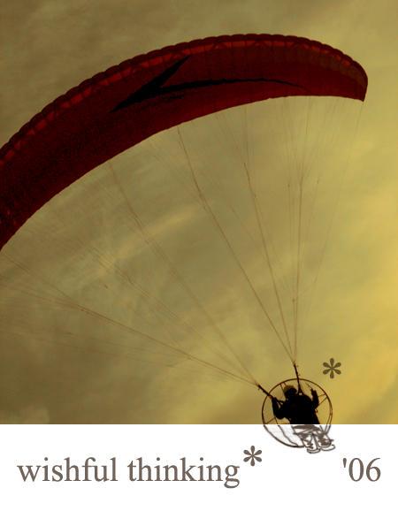 wishful flight by hepikied