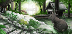 Deers in japanese forest