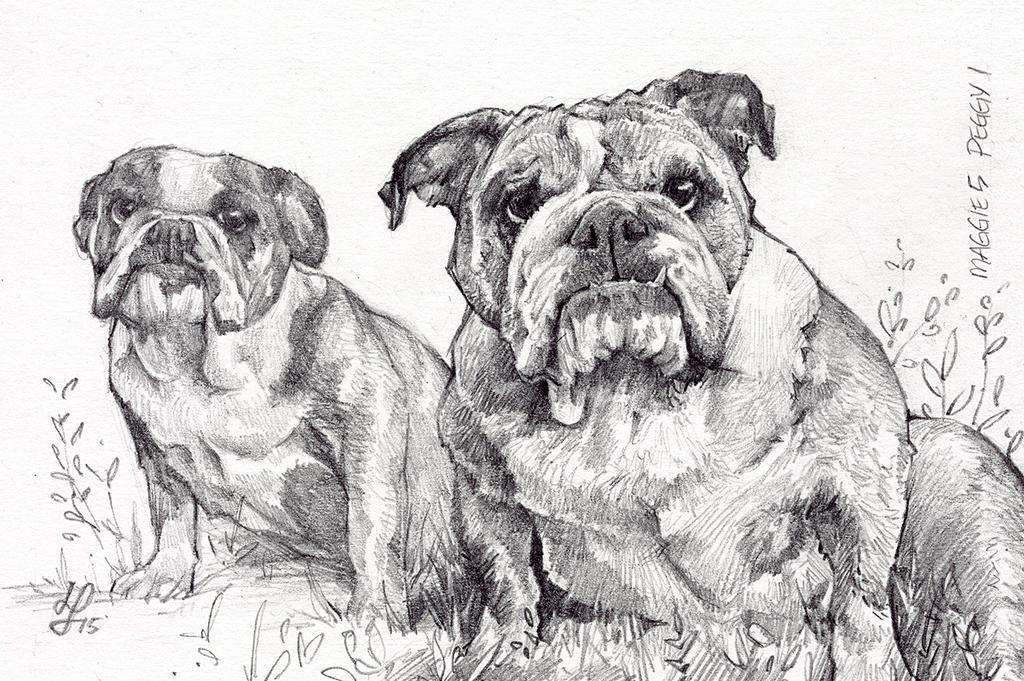 Doggy Portrait by rek0