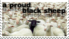 A Proud Black Sheep by peppy-heppy