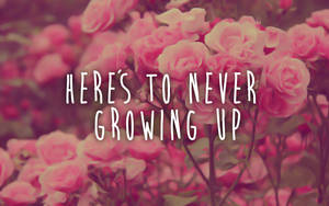 wall here is to never growing up by Analaurasam