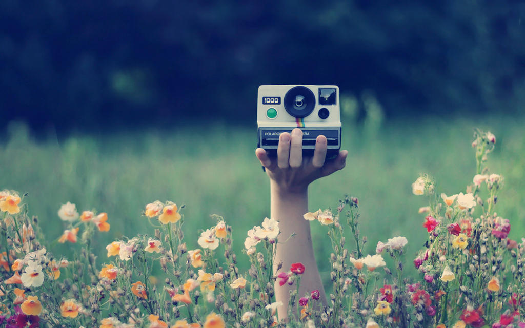 Wallpaper photography by analaurasam on deviantart - Wallpaper picture ...