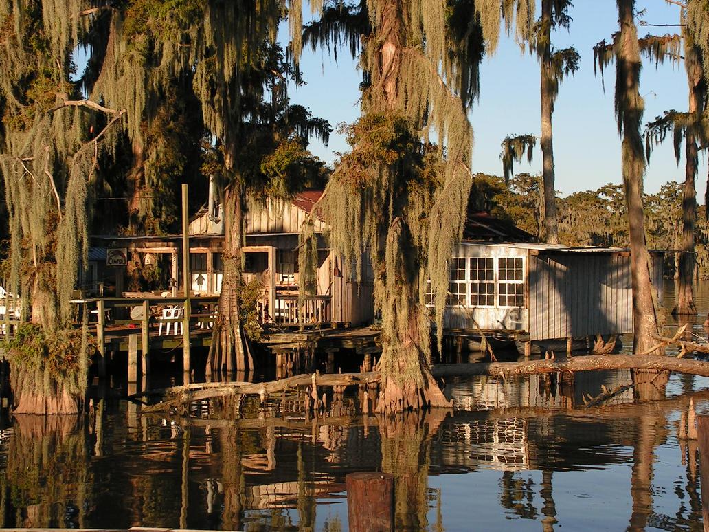 Bayou shack by stevenwaynesmith on deviantart for Fishing cabins in louisiana