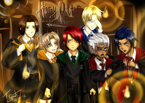 HP and the Realms of Destiny