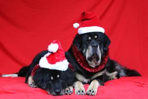 Santa's little helpers by SaNNaS