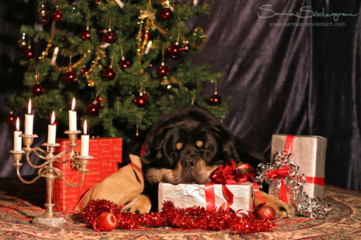 'I don't wanna miss Santa...'