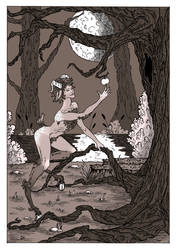In the magic woods.