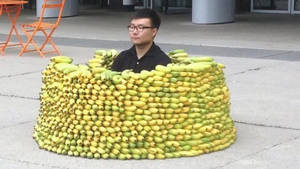 Banana Fort