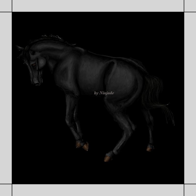 Galerie de Ninjade,  Janv.2010 -  Avril 2013 - 38 colos Black_bored_by_hippotrope-d5cy3fy