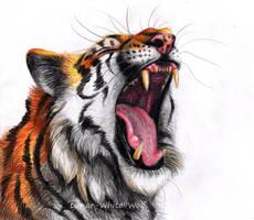 Tiger by Lunar-White-Wolf