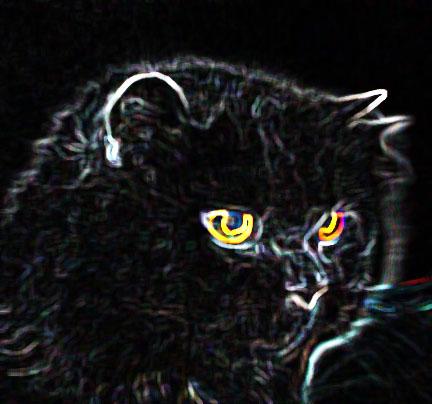 Spirit Cat by criss3366