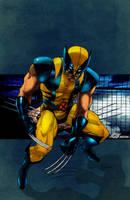 Wolverine by commanderlewis