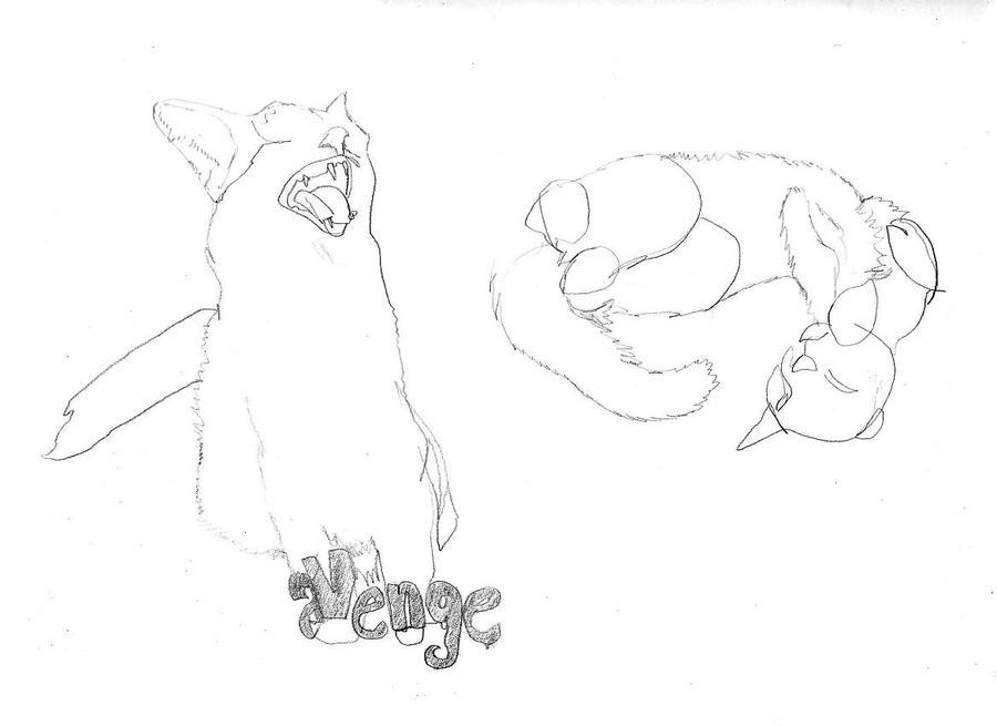 Feline Vengeance