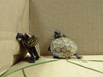 turtle 2 by einlanzer