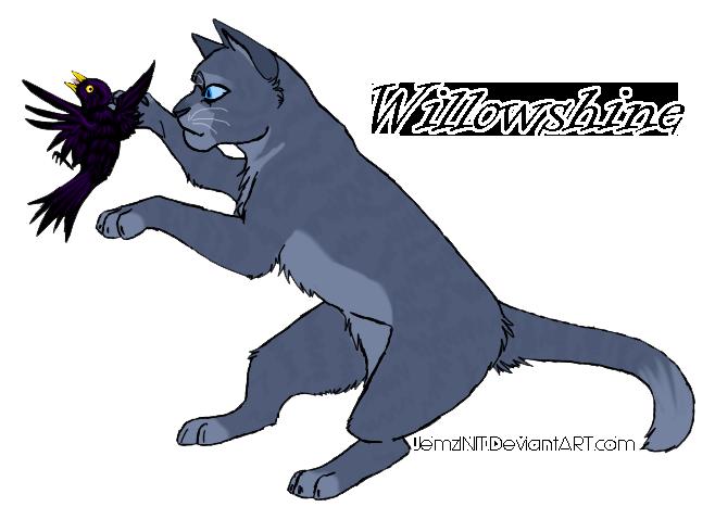 Willowshine by iJemz on deviantART Willowshine Warriors