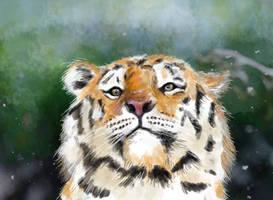 Tiger In Woods by JonasEklundh