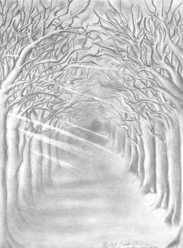 Anime Scenery Forest Forest Pathway Drawing...
