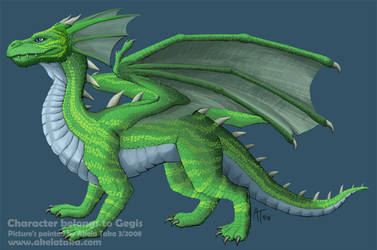 Dragon Commission by akelataka