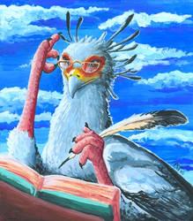 Secretary Bird by akelataka