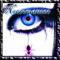 Necromancer Image by xKarexBearx